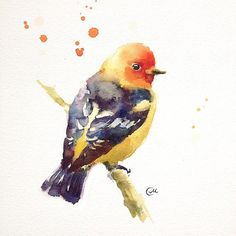 Watercolor Bird  Print 8 x 8 inches por CMwatercolors en Etsy, $25.00