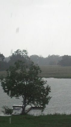 Summer 2013 east texas rain