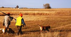 The 25 Best Pheasant Hunting Towns in America