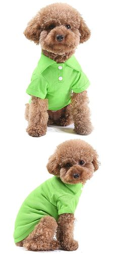 GohEunGyung shop?Green XS?Pet Puppy Summer Shirt Small Dog Cat Pet Clothes Costume Apparel T-Shirt >>> Click on the image for additional details. (This is an affiliate link and I receive a commission for the sales)