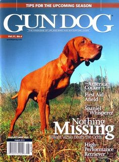 Gun Dog Magazine August 2012 Vol 31 #4  #vizsla  our friend BARTY!!!! See more of Bart & his Vizsla 3-legged friends at www.facebook.com/vizslatripawds