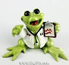 KITTY'S CRITTERS Dr McFroggy Doctor Frog NEW NIB
