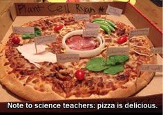 RT @CbwynnWynn: Cell structure revision anyone? Lovely (and tasty) idea from @AsapSCIENCE #ozscied #aussieED
