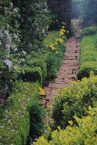 Secondary path in Verey's Barnsley House, Gloucestershire, potager image courtesy of Rosemary Verey's Making of a Garden