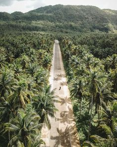 9 Things To Do in Siargao, Philippines - Our Itinerary and Budget — We Moved Abroad Siargao Philippines, Voyage Philippines, Les Philippines, Philippines Travel, Philippines Culture, Beach Aesthetic, Travel Aesthetic, Aesthetic Art, Palawan