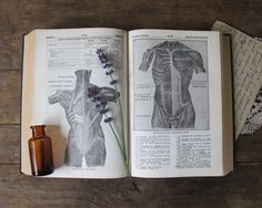 Antique Medical Dictionary, Rustic Home Decor Curiosity. $25.00, via Etsy.