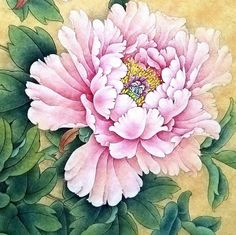 Peony painting, silk painting, watercolor paintings, chinese flowers, p Asian Flowers, Oriental Flowers, Chinese Flowers, Japanese Flowers, Peony Painting, Silk Painting, Watercolor Flowers, Watercolor Paintings, Botanical Drawings
