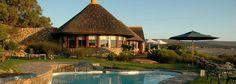 Grootbos Lodge, Zuid-Afrika. Fynbos!