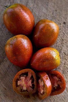 Amish Paste Tomato Organic(85 days) - Pinetree Garden Seeds - Vegetables