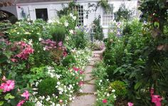 Lots of photos and text about using a cottage garden style-traditional or contemporary