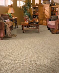 Patterned neutral berber carpet for bedrooms and family room | Dream ...