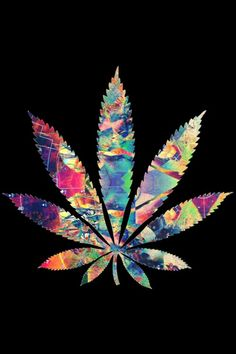 Buy medicinal kush and cannabis oil now online Buy Sensi Seeds Hemp 3% CBD oil online - Sensi Seeds UK Nice! Real medicine , thats what we are all about as well#contact us via=(424) 334-1310 EMAIL=tommykane26@gmail.com