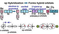 التهجين في الكيمياء hybridization Promotion, Bullet Journal, Words, Horse