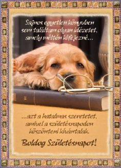 Birthday Greetings, Birthday Cards, Happy Birthday, Name Day, Happy Family, Disney, Kittens, Puppies, Humor