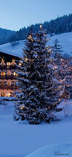 Switzerland ❆ Ski Party at the Chalet ❆