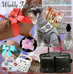 Designer Dog Boutique offering the best selection of Luxury Dog Carriers, Leather Collars, Fancy Dog Clothes, Pet Beds and Accessories at unbeatable prices. Dog Boutique, Boutique Design, Diy Dog Purse, Animal Design, Dog Design, Mutt Dog, Dog Carrier, Leather Collar, Pet Beds