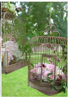 Bird cage hanging flowers