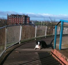On top of the mount (fleetwood)