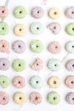 Mini Vanilla Bean Donuts - Cutest Ever!