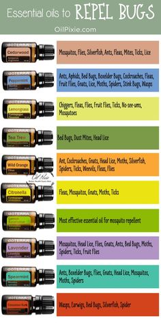 Stop using toxic bug spray and make your own all-natural effective bug spray with essential oils Essential Oil Bug Spray, Essential Oil Uses, Doterra Essential Oils, Bug Spray Recipe, Natural Bug Spray, Insect Repellent, Useful Life Hacks, Bugs, Bug Control