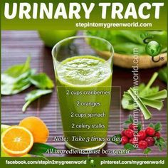 Uti Smoothie natural faster healing of Urinary Tract infections and better Urinary Tract