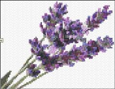 lavendar free cross stitch