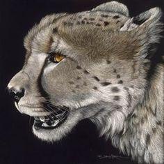 scratchboard cheetah by Sally Maxwell