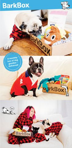 BarkBox delivers a monthly themed box of carefully selected doggy toys and treats, and (more importantly) a pawsome experience for you to share with your furry friend. All treats are full-size, all-natural, and made in USA/Canada. Plans can be customized for big or small dogs, heavy chewers, and pups with allergies. Most of all, it just makes dogs happy.