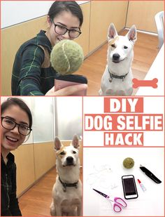 The easiest DIY way to get your dog's attention for the perfect selfie! #dogsdiyhacks