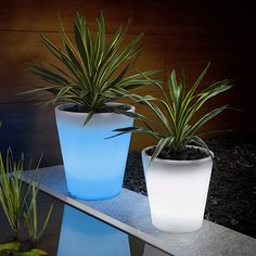 solar powered flower pot.  These are such a great idea and would be such a great addition to our home.