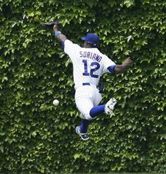 The home run fence at Wrigley Field is covered in ivy. Chicago Illinois, Chicago Cubs, Chicago Girls, Go Cubs Go, Brand New Day, Hubby Love, Better Baseball, Wrigley Field, Sports Images