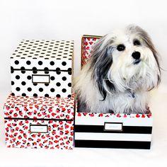 Kate Spade Nesting Boxes