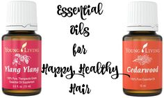 Have you tried these essential oils to keep your hair happy and healthy?