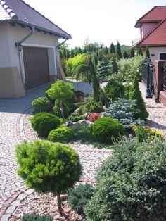 Beautiful Flowers Garden, Land Scape, Waterfall, Backyard, Exterior, Gardening, Women's Fashion, Plants, Outdoor