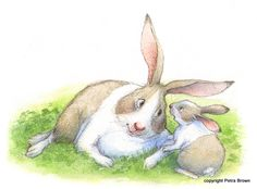 Portfolio - Petra Brown, Children's Book Illustrator - 'If You Can... We Can!'