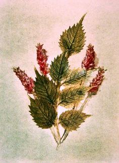 Botanical Art Forest Art Print Original Engraving por Tutorialpaper