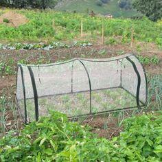 Mini drivhus. Giv dine planter en god start på livet.
