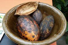 El chocolate es mejor si el #cacao se fermenta con la levadura para elaborar cerveza