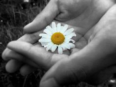 Dove c'è più sacrificio, c'è più generosità.