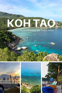 Pin on Team Voyage Road Trip Destinations, Pipe Dream, Koh Tao, Blog Voyage, Happiness, Articles, Lifestyle, Inspiration, Dolphins