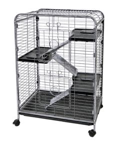 Ware Manufacturing Home Sweet Home 4-Level Small Animal Cage & Reviews | Wayfair