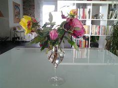 Le rose del giardino dopo la potatura