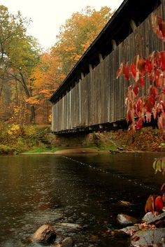 Rain - Covered bridge in Michigan