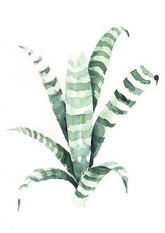 Plants illustration by Annet Weelink