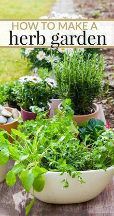 Herbs Gardening How to make a herb garden. Tips for whether you want to grow your herbs in your yard or in the house. - Whether you want to grow a herb garden in your yard or in the house, here are some tips on HOW TO MAKE YOUR OWN HERB GARDEN! Hydroponic Gardening, Hydroponics, Container Gardening, Herb Gardening, Herbs Garden, Gardening Books, Gardening Vegetables, Flower Gardening, Kitchen Gardening