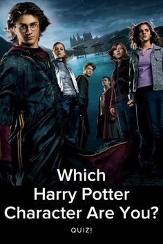 Which Harry Potter Character are you? take this quiz and find out today! I am Harry Potter! Harry Potter Character Quiz, Harry Potter Quiz, Harry Potter Room, Harry Potter Characters, Draco Malfoy, Hermione, Fun Quizzes, Random Quizzes, Harry Potter Tattoos