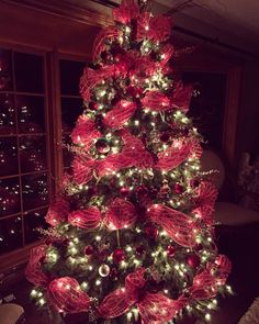 Christmas Tree 2015.
