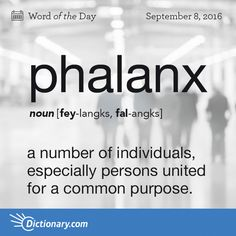 Phalanx (n) ..a number of individuals, especially persons united for a common purpose