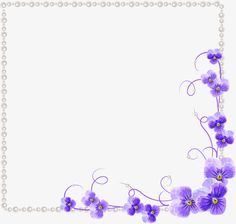 Orchiddecorationvectorpearl Borderfemalewomens Clothingshopframetext Boxphoto Framestudioleave The Pngpearlborderwomensclothingtextbox