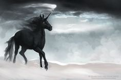 Black Beauty by NadiavanderDonk.deviantart.com on @deviantART